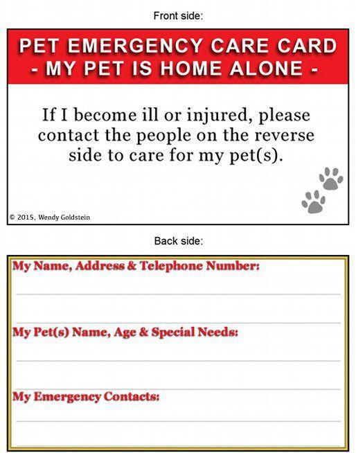 Pet Emergency Card Paws Pack Of 2 Pet Emergency Pet Emergency Card Emergency Care