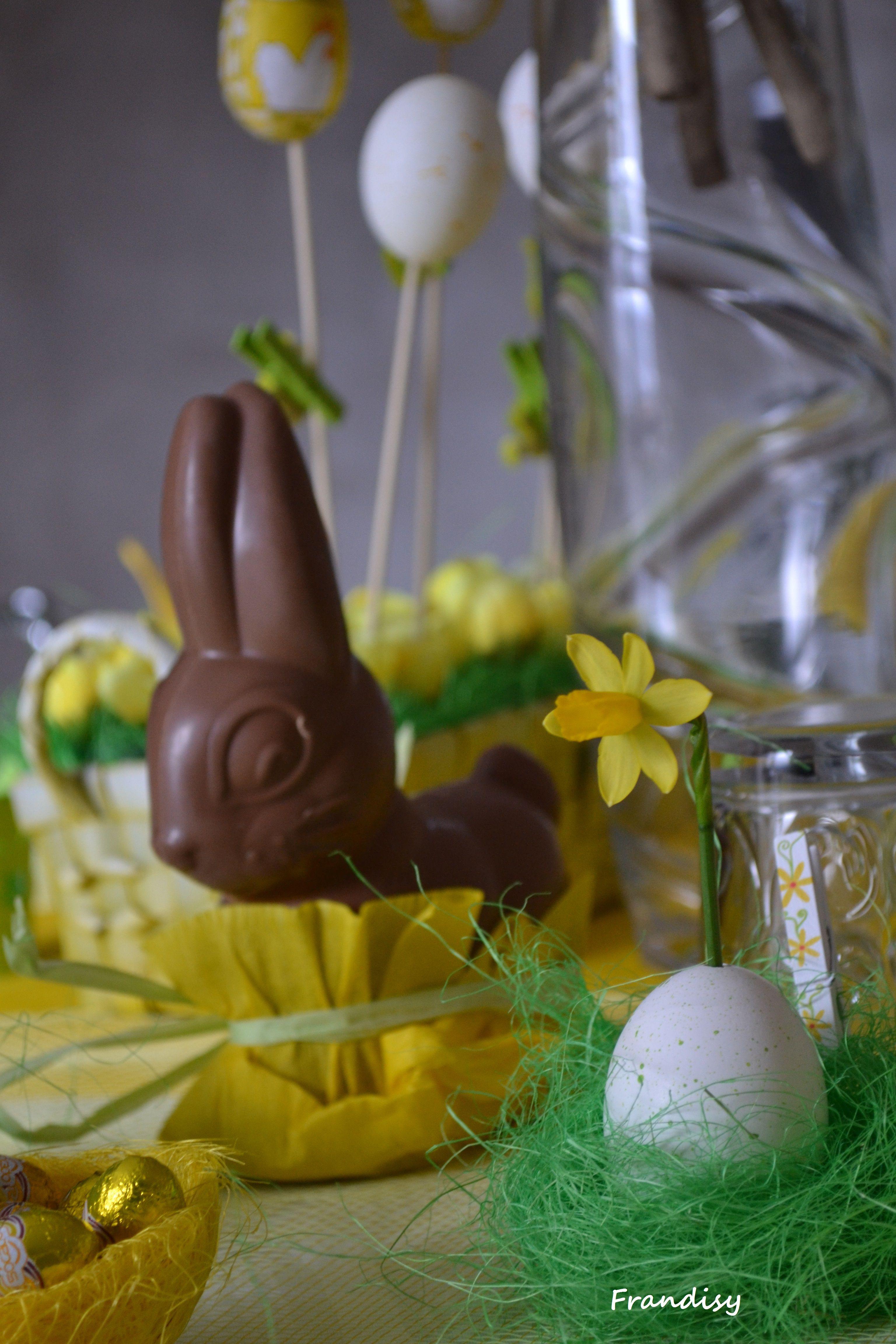 Ciocco coniglio tavola Pasqua
