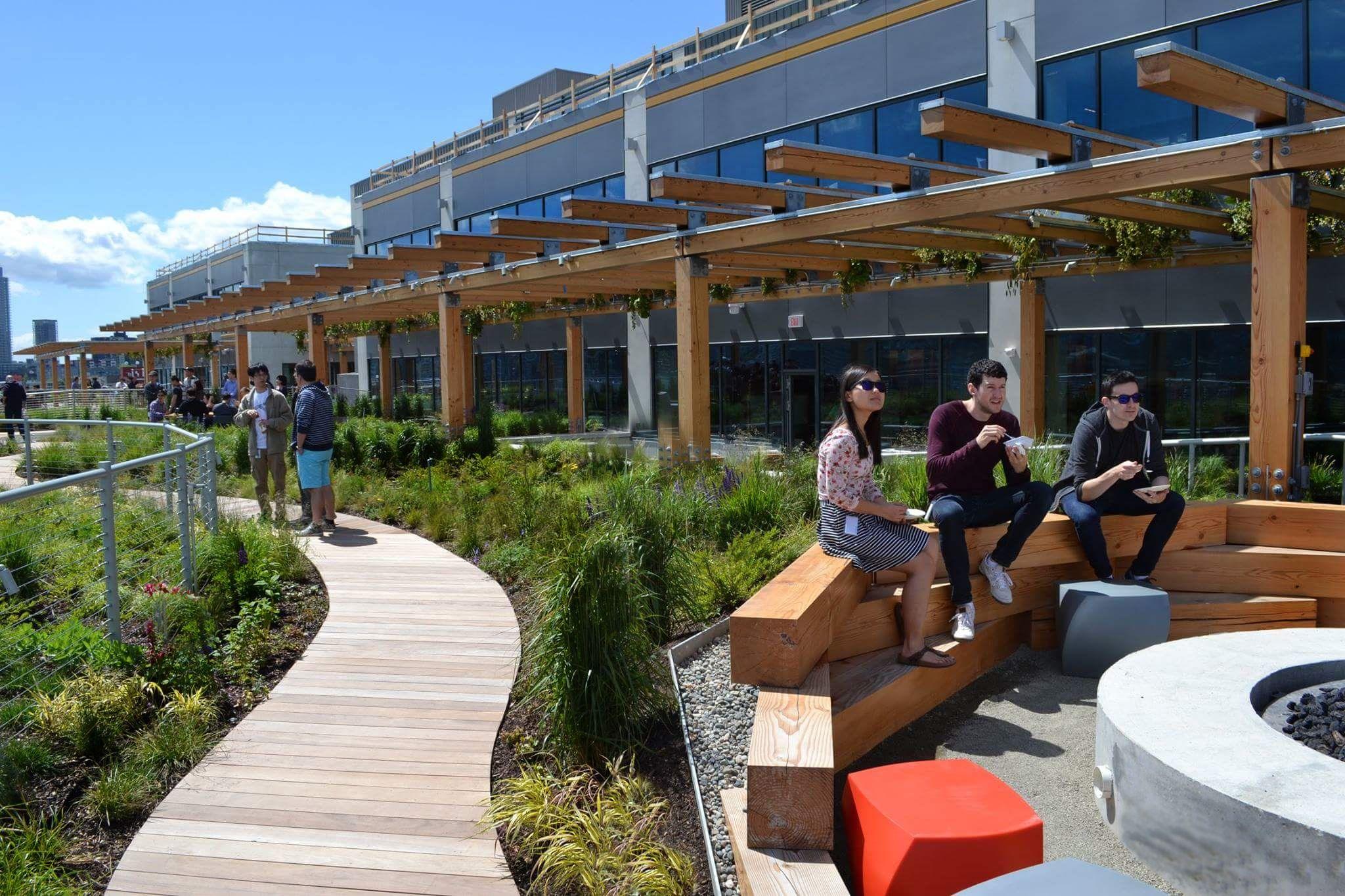 Facebook Headquarters Seattle Roof Top Garden Rooftop Garden Living Roofs Outdoor Design