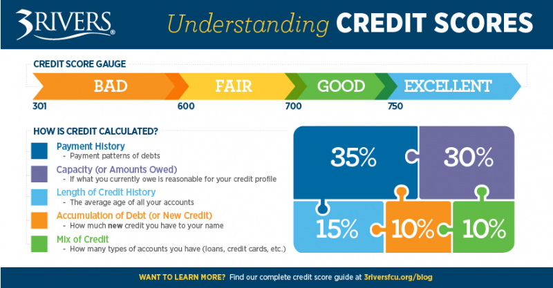 Understanding Your Credit Score How A Credit Score Is Calculated Finances Personalfinance Money Lifet Federal Credit Union Personal Finance Credit Score