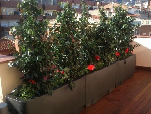 Como elegir macetas para el balc n plantas en macetas for Macetas para balcon