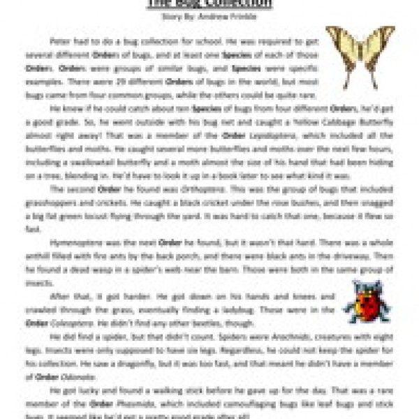 5th grade reading comprehension essay