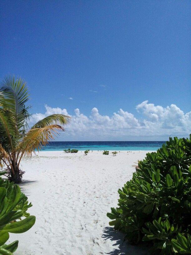 Kagi_ Maldivas.