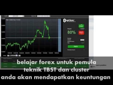 Zenith investors binary options trading horse betting tips nzz