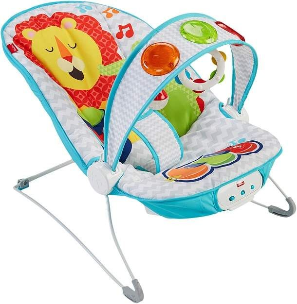 e2c93fee1a92 Fisher-Price Kick  n Playtm Musical Bouncer Accessories Travel ...