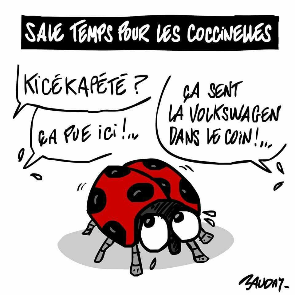"Baudry (2015-09-23) VW et ""fraude"" antipollution"