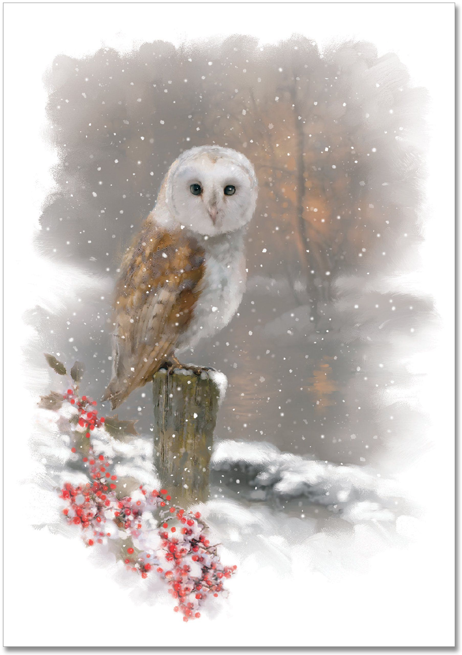 Winter owl small boxed holiday cards christmas cards greeting winter owl small boxed holiday cards christmas cards greeting cards peter pauper kristyandbryce Choice Image