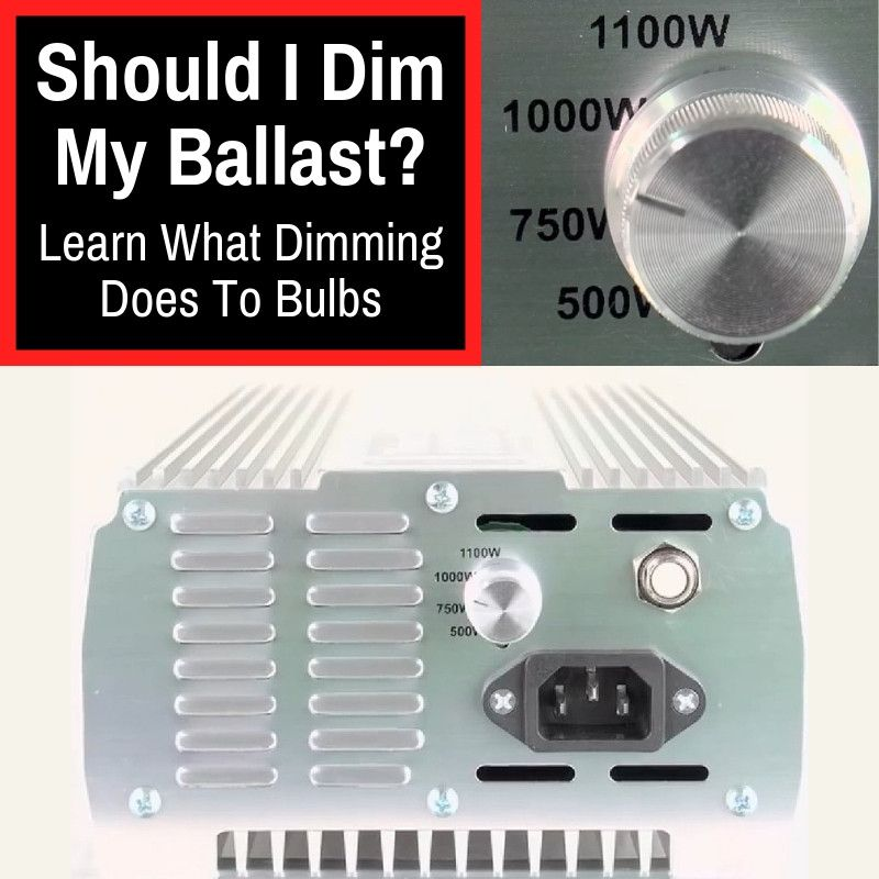 Should I Dim My Ballast Learn What Dimming Does To Bulbs Grow Light Info Ballast Bulb Grow Lights