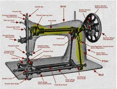 ed6e40fc89c Image result for labeled diagram of butterfly sewing machine ...