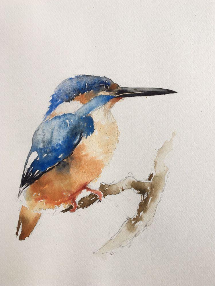 Kingfisher Watercolor Aquarell Tiere Wasserfarben Vogel