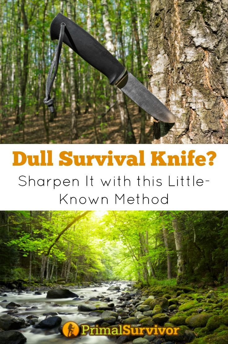 When it comes to survival tactics and gear, there is little that survivalists can agree on. But there is one thing that all survivalists all say for certain: You need a survival knife in with your supplies.  Having a survival knife means you can do things like make your own cordage, make shelters, baton wood, and skin animals with a lot more ease.  But a dull survival knife isn't going to do you much good.