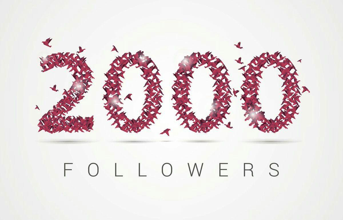 webverkoper on Twitter second milestone 1000 followers