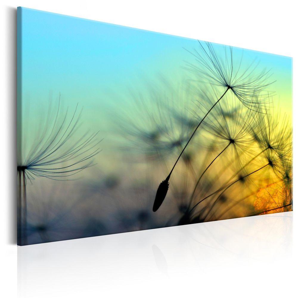 leinwand bilder xxl kunstdruck bild pusteblume natur b b 0091 b a einrichten und wohnen. Black Bedroom Furniture Sets. Home Design Ideas