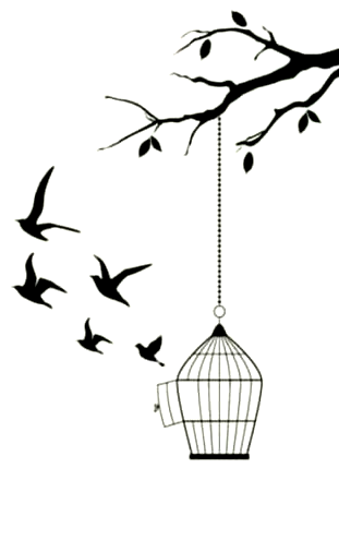 Trendy Bird Cage Tattoo Ideas 38 Ideas Tattoo Bird Birdcage Tattoo Cage Tattoos Bird Drawings