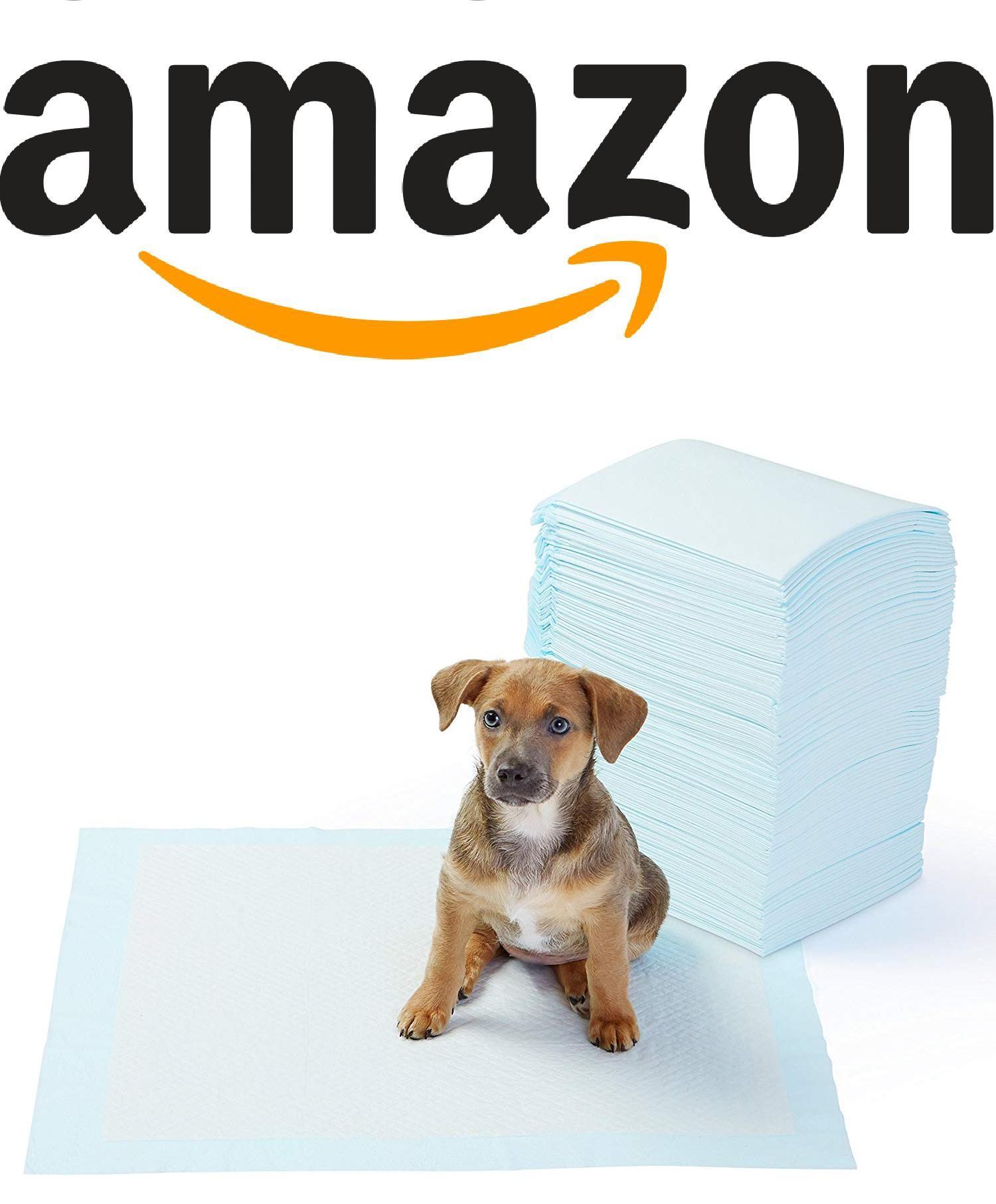 Amazonbasics Pet Training And Puppy Pads Regular 100 Count