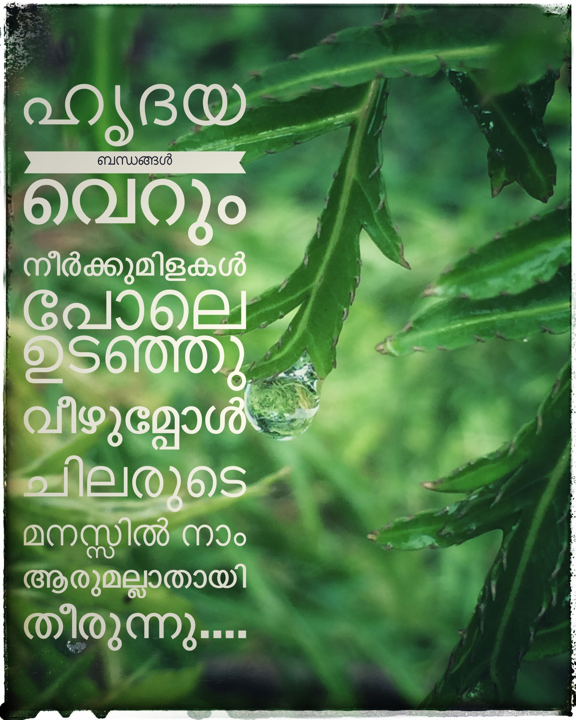 Feeling Words In Malayalam