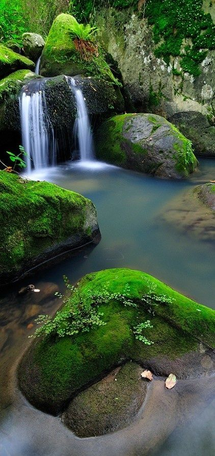 Chutes Victoria: Natural Park Of The Acorns In Andalucia, Spain