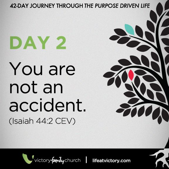 42 Day Journey Through The Purpose Driven Life