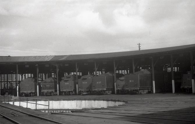 Goulburn loco depot steam engines 52, 32, 36, 59, 38, 50