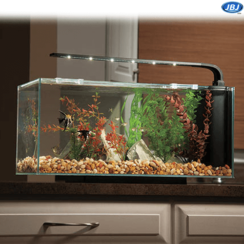 Jbj Rimless Desktop 10 Gallon Curved Glass Peninsula W Lyra Led Light On Sale 219 97 Easy Pets Pet Turtle 10 Gallon Fish Tank