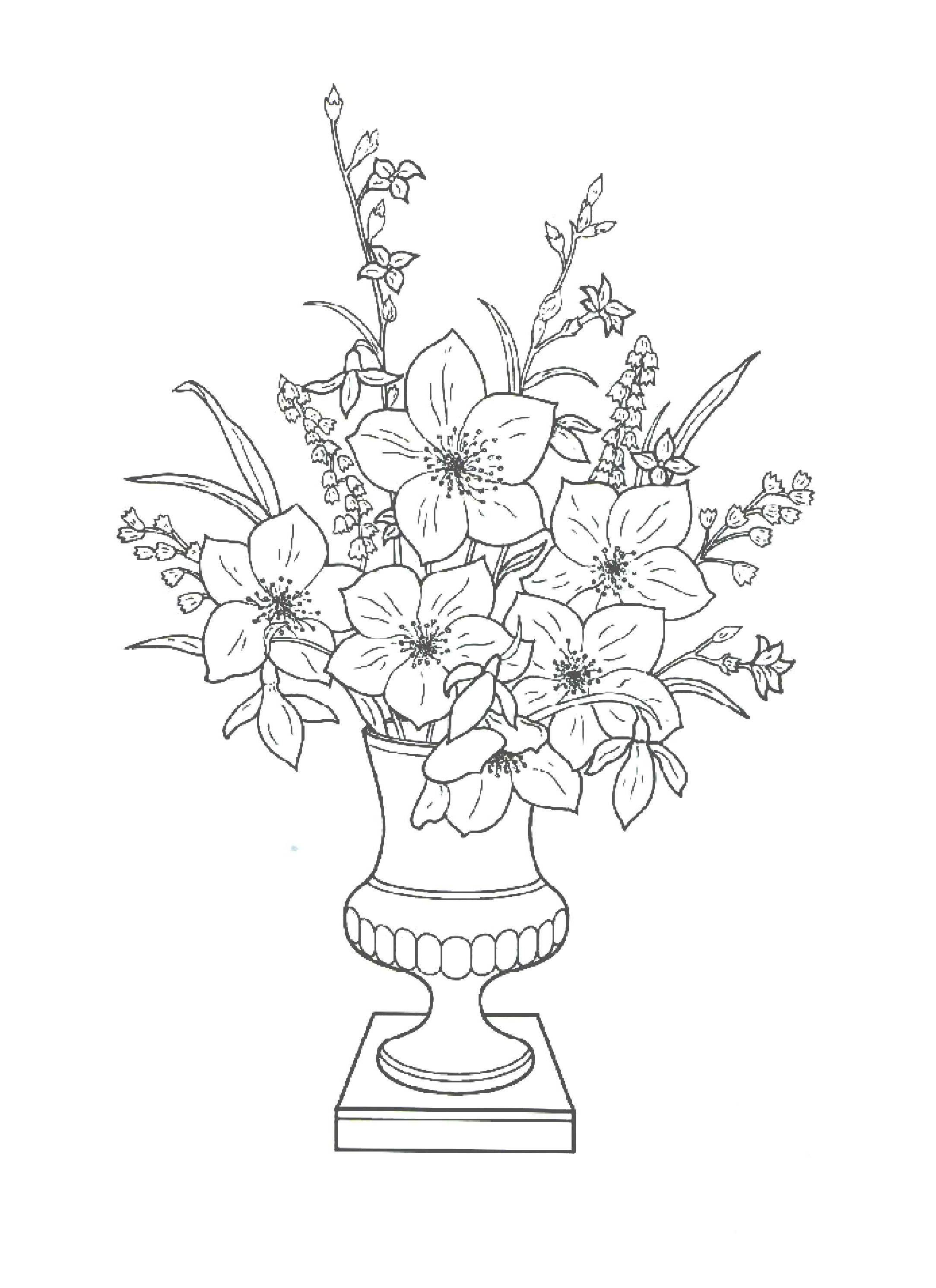 Цветы на открытку раскраска