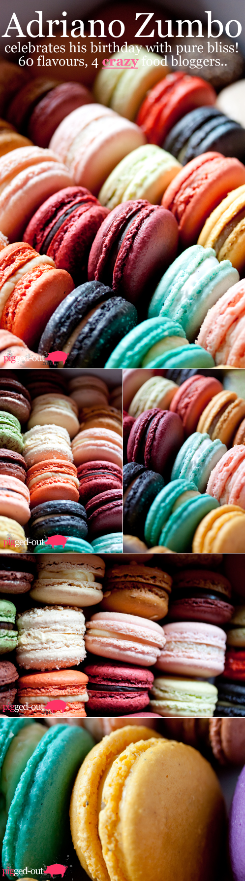 Flavors of Macaroons By Adriano Zumbo