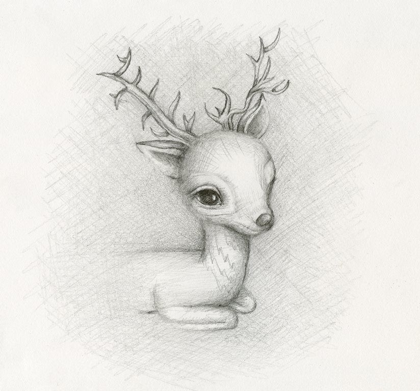 deer sketch by lauren saxton fair rosamund art
