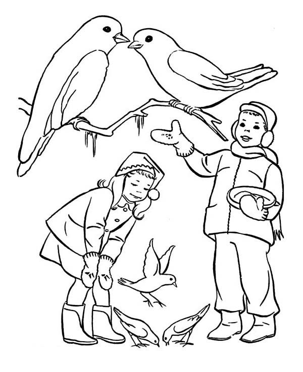 Animals In Winter Coloring Pages Google Search