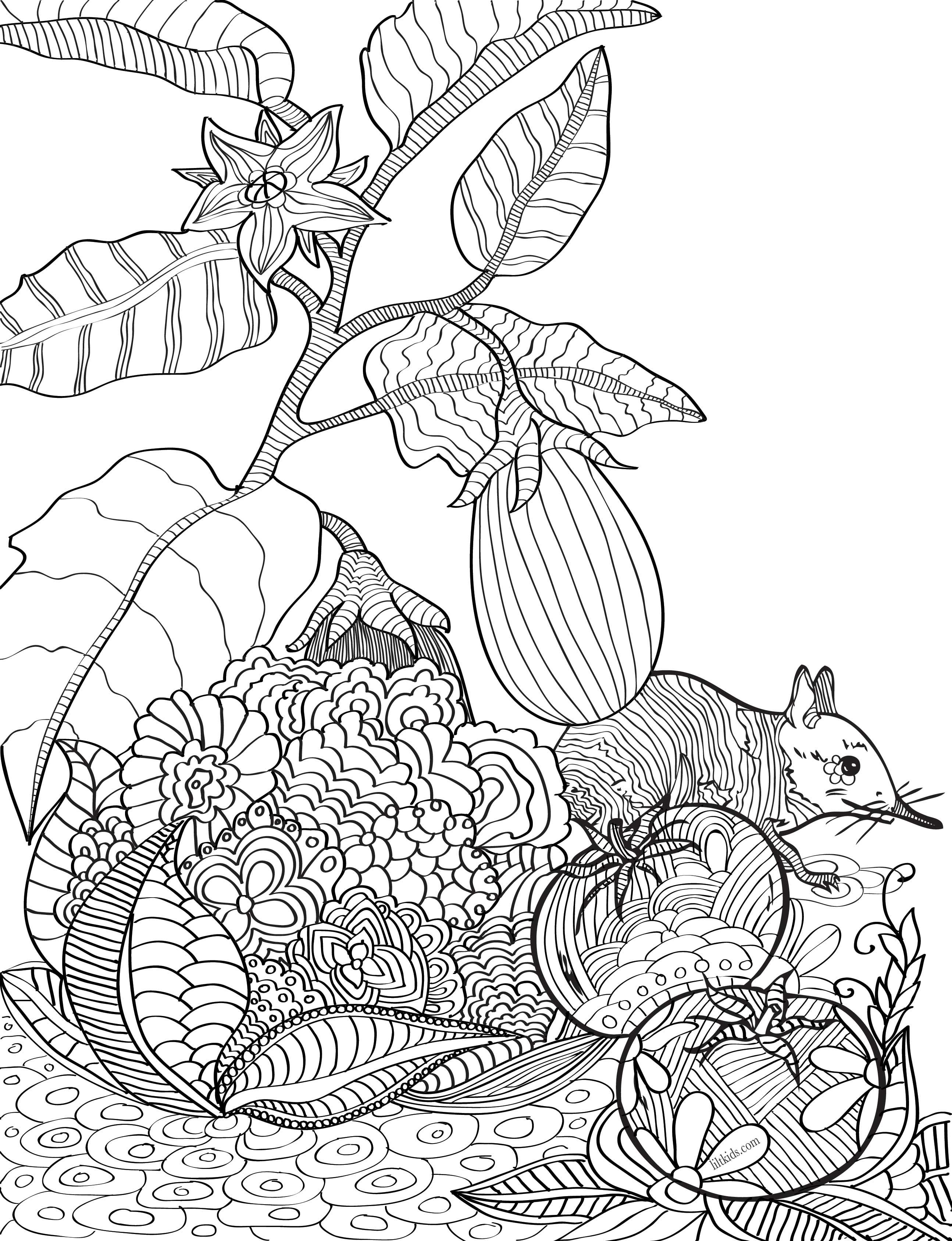 Free garden adult coloring book image from LiltKids