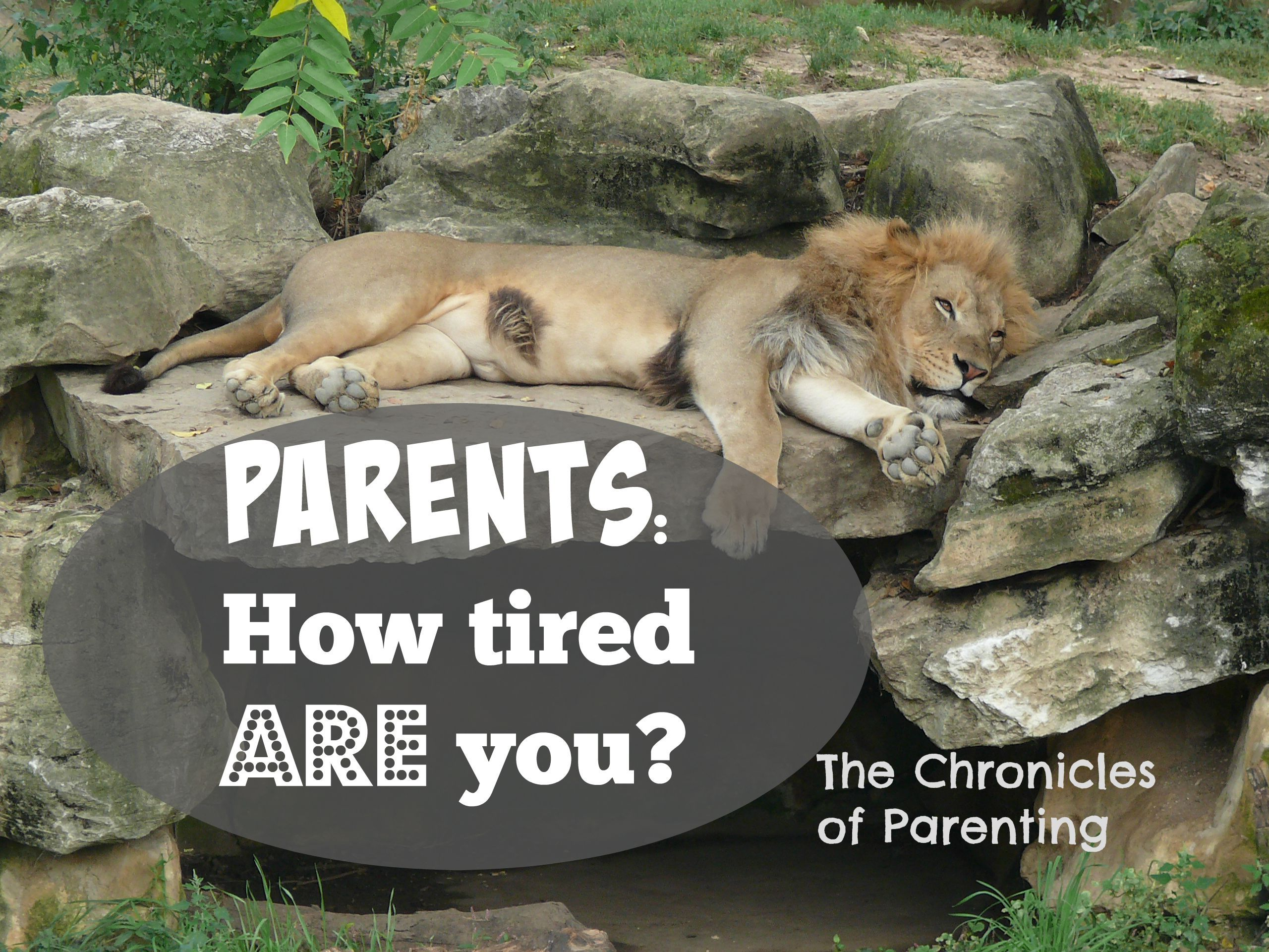 Are You An Extremely Tired Parent Here Are The Primary Symptoms
