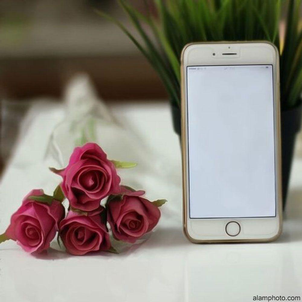 صور للتصميم بدون كتابة 2021 عالم الصور Flowers For You Iphone Beautiful Flowers