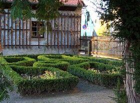 buchsbaum schneiden zeitpunkt f r fein und grobschnitt topiary 2 pinterest buchsbaum. Black Bedroom Furniture Sets. Home Design Ideas