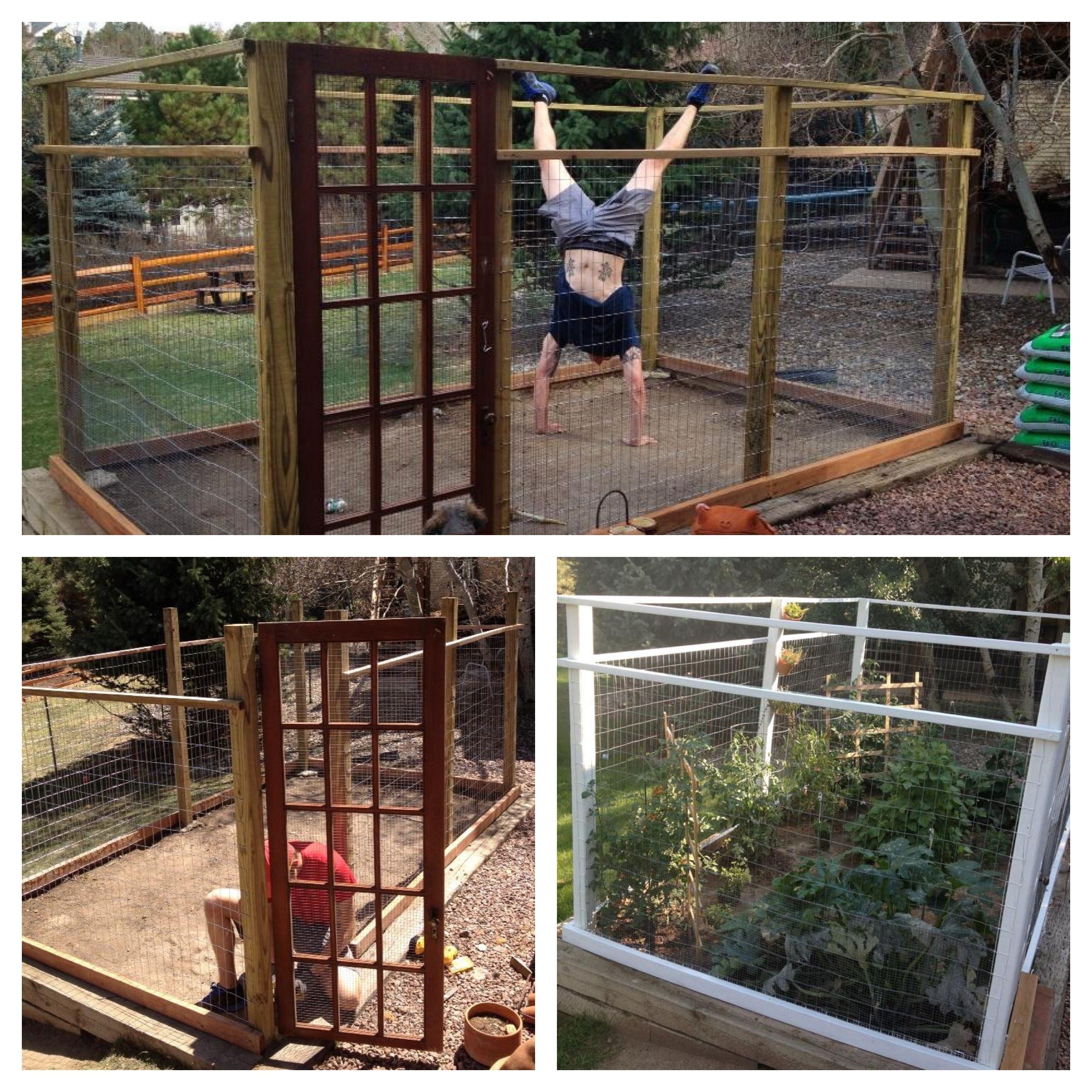 The Amazing Deer Proof Garden My Hubby Built Me. It Was