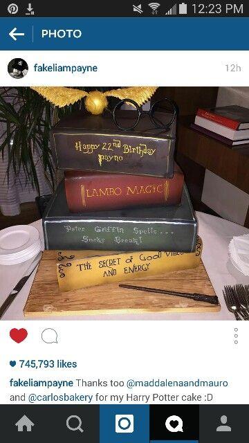 Awe Inspiring Liams Birthday Cake Harry Potter Cake Harry Potter Birthday Funny Birthday Cards Online Hendilapandamsfinfo