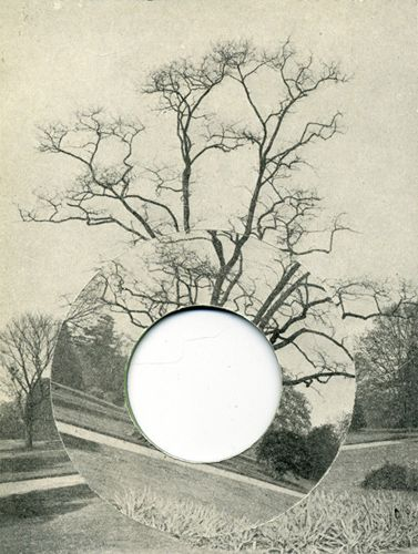 "David Gates  Tree  collage, paper, card, 15×11cm (5.9""×4.3"") 2011"