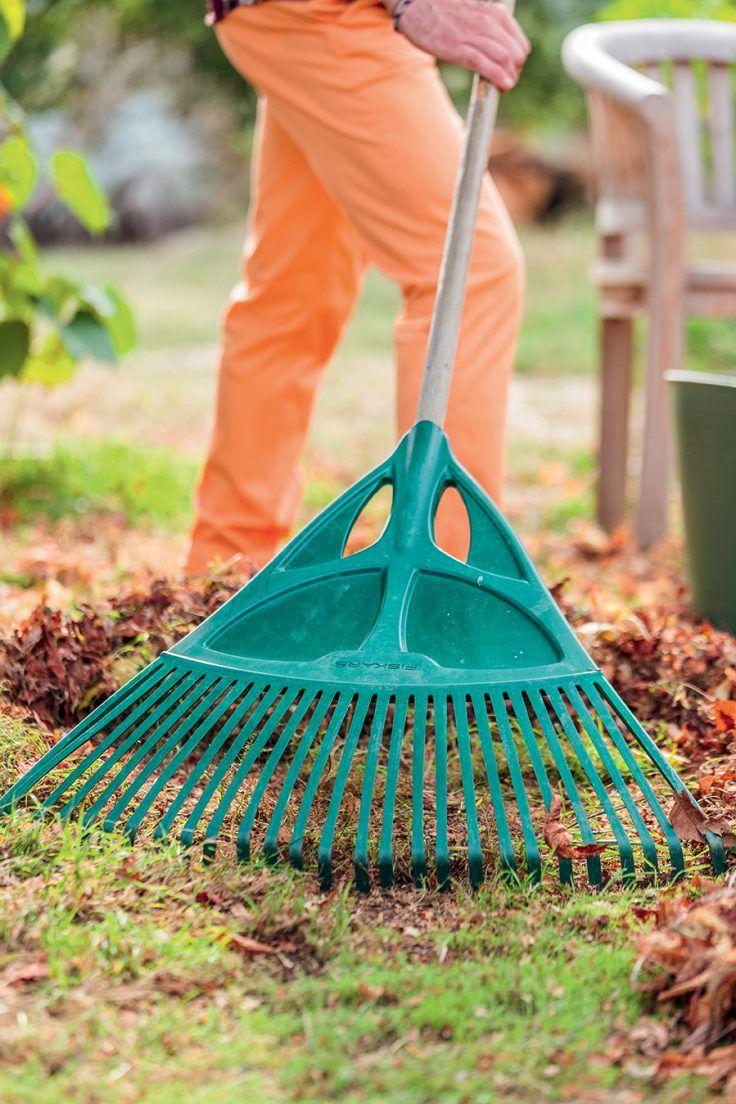 Quoi Planter En Octobre que faire au jardin en octobre ? | que planter en octobre