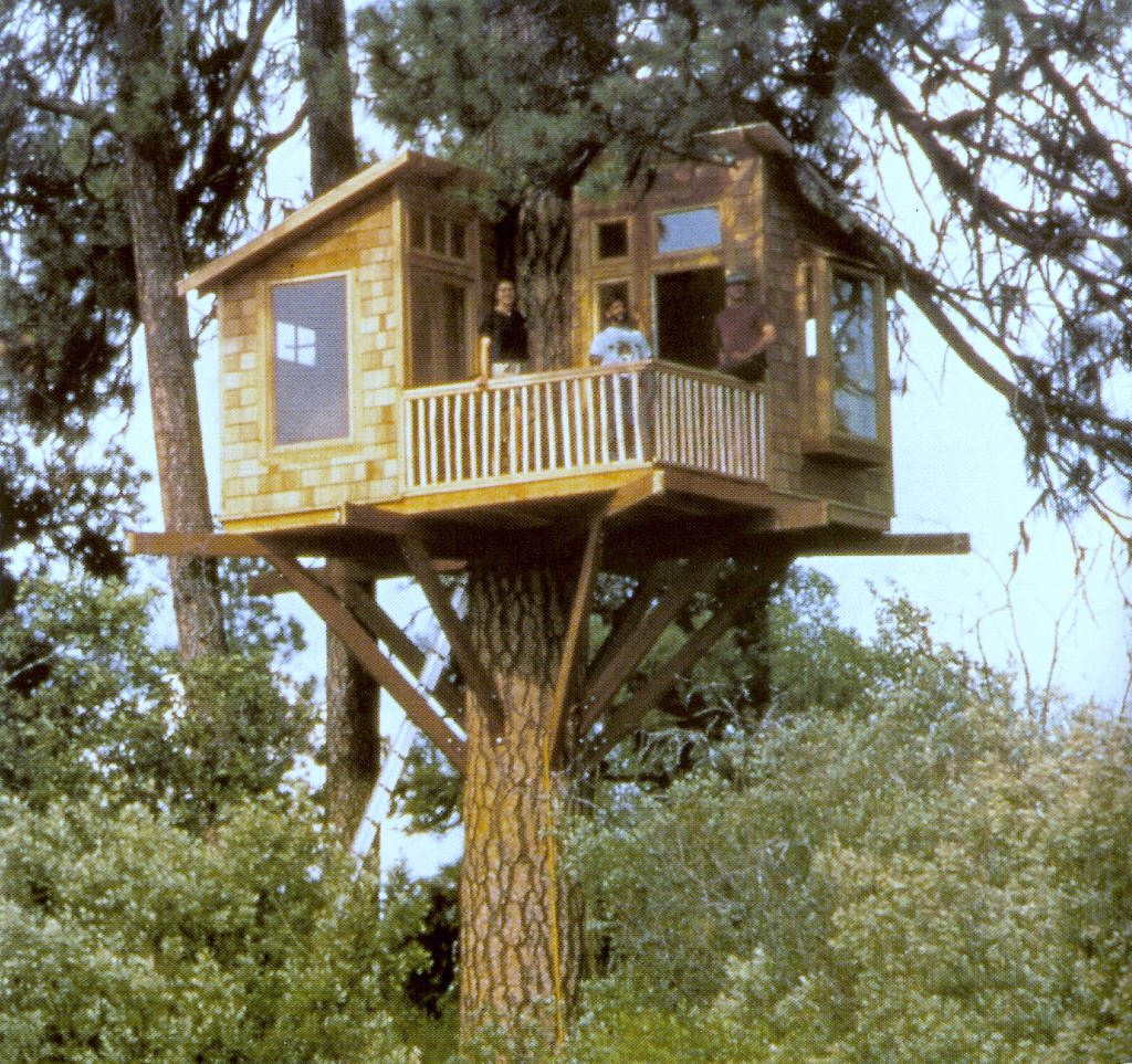 marvelous tree houses ok not exactly all tiny homes but