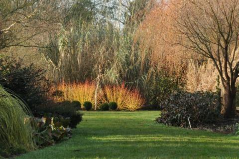 Sir Harold Hillier Gardens Hampshire Winter Garden Garden Landscape