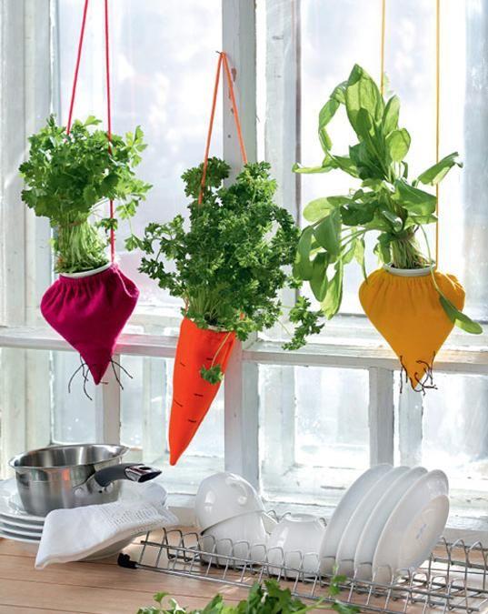 Cute Indoor Herb Garden 640 x 480