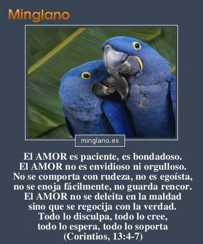 Frases Sobre El Amor Verdadero En La Biblia Frases Pinterest