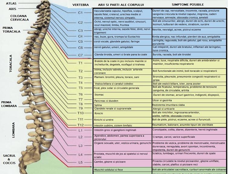 dureri cronice la nivelul picioarelor și spatelui
