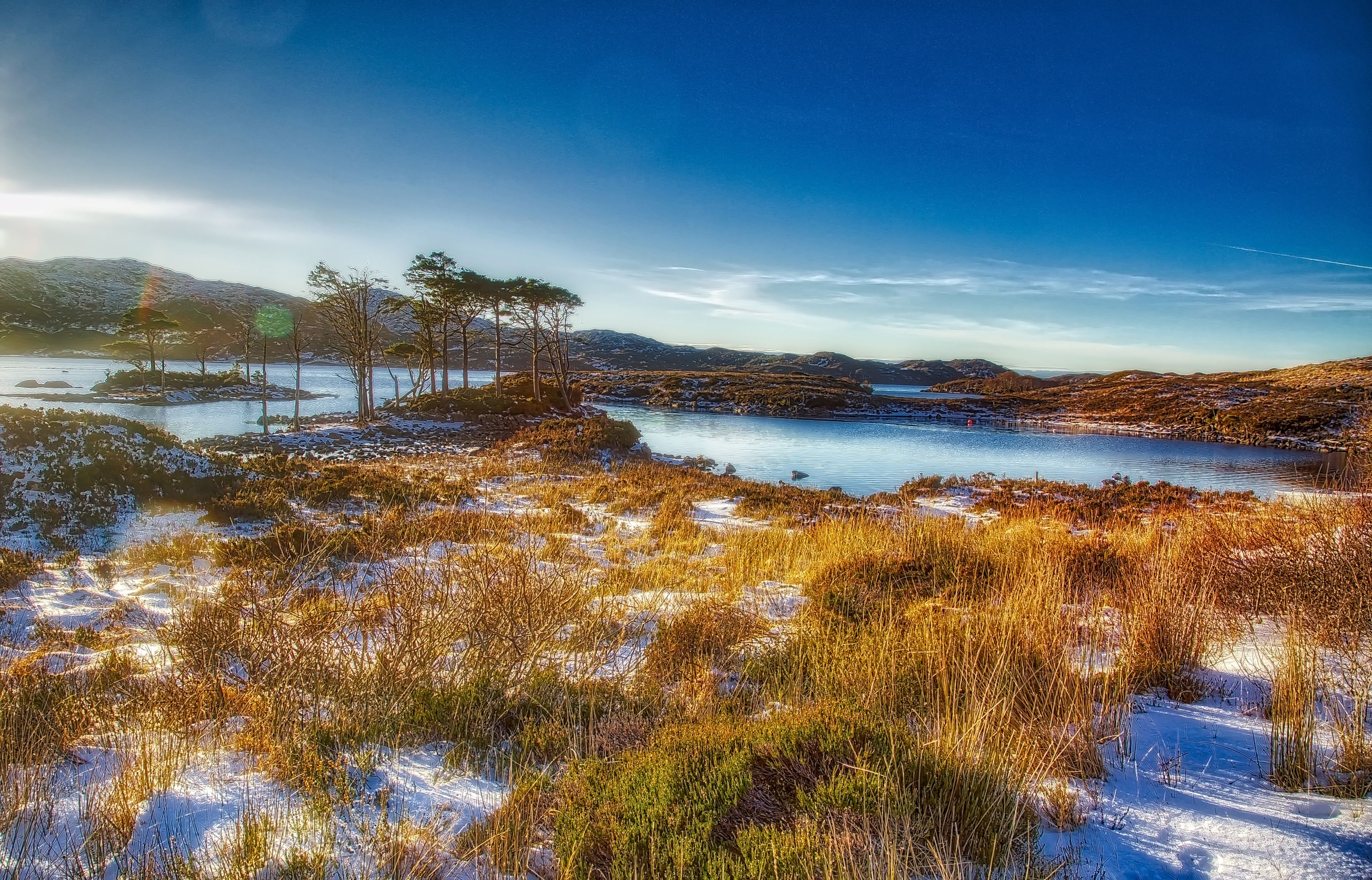 View of a Scottish Loch and Scots Pine on the North West ...