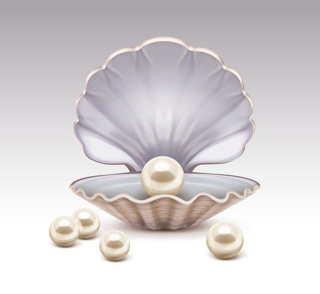 Realistic Illustration Of Open Seashell With Nacre Beige Pearls Inside And Around Isolated On Gray Gradient Background