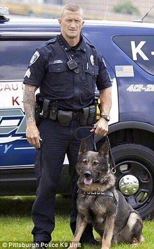 K9 Officer Breaks Down During Emotional Funeral For His Dog Aren K9 Officer Police Cops Animal Heros