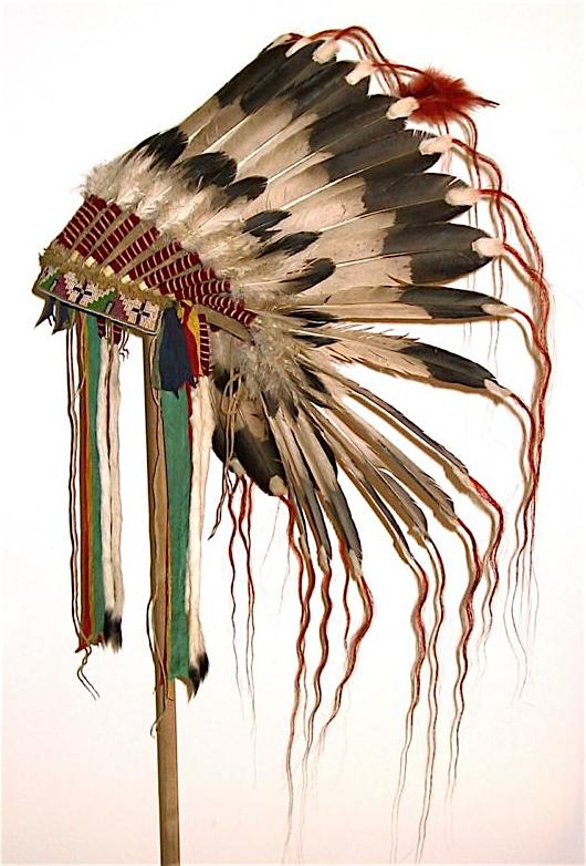 Picture 8 Png 530 782 Native American Headdress Feathered Bonnet Flower Dress Art