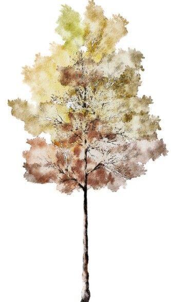 Pin By Ipin Lululululu On Resources Tree Photoshop