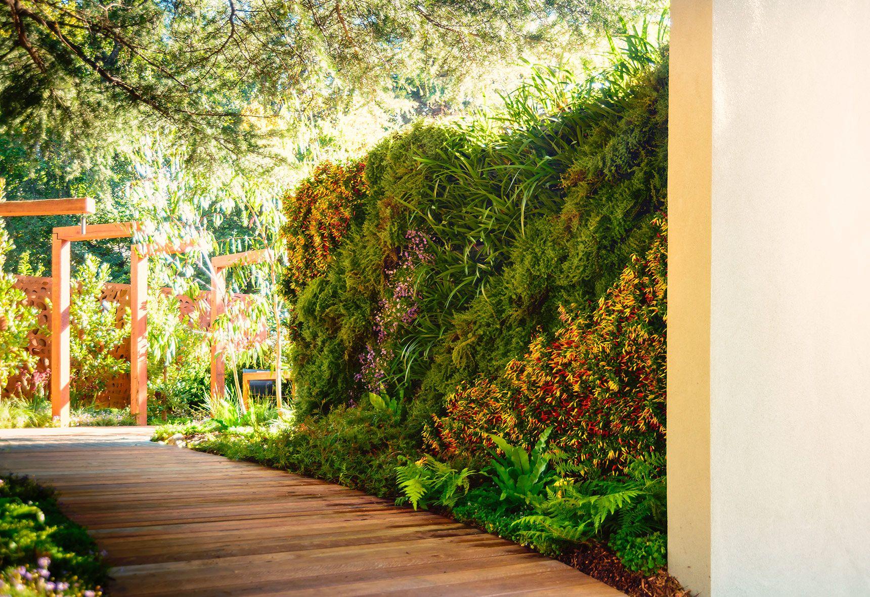 MIFGS - Vertical garden / wall garden / living garden with Herbs ...