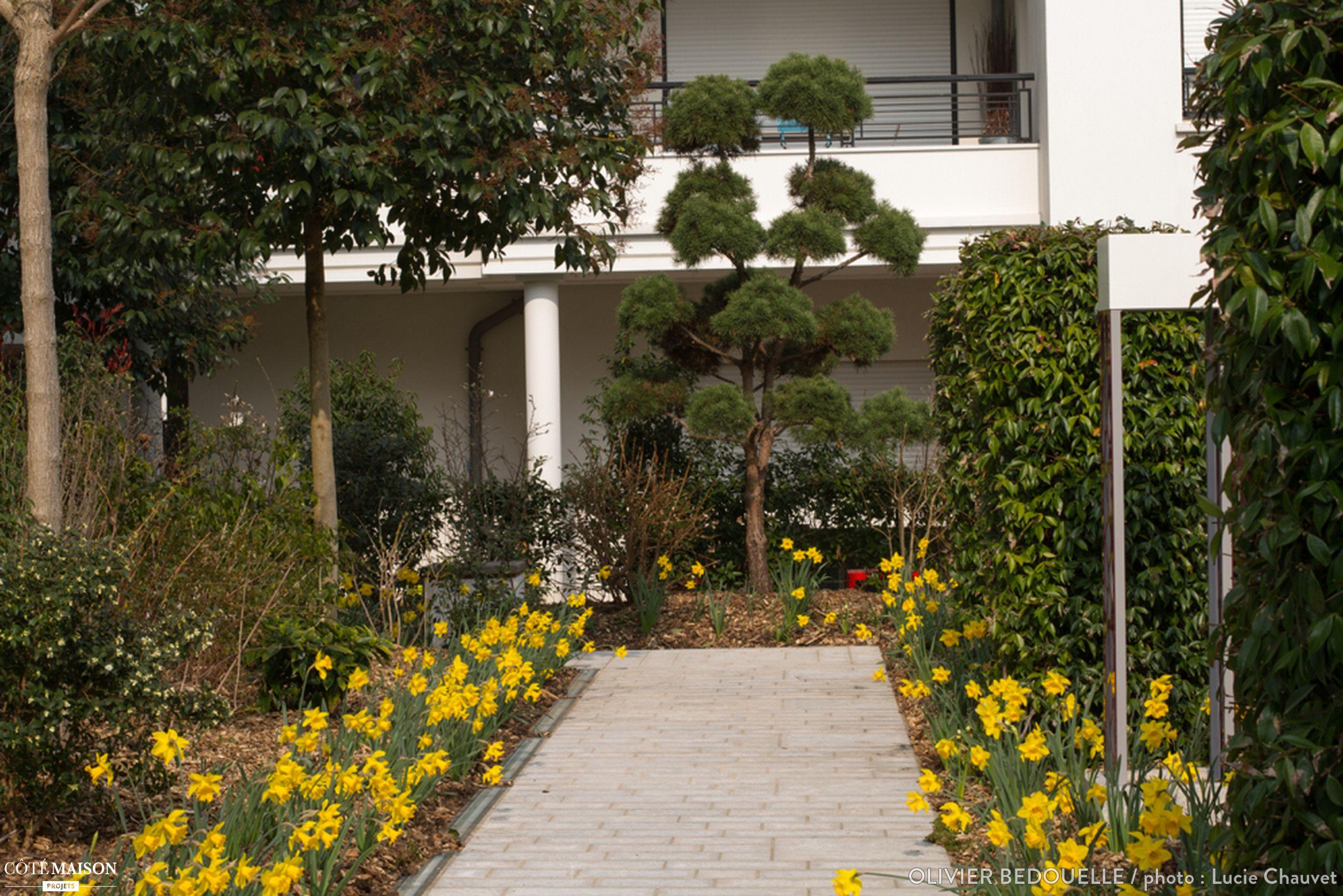 Un jardin vivant espace ext rieur jardin par c t for Jardin vivant