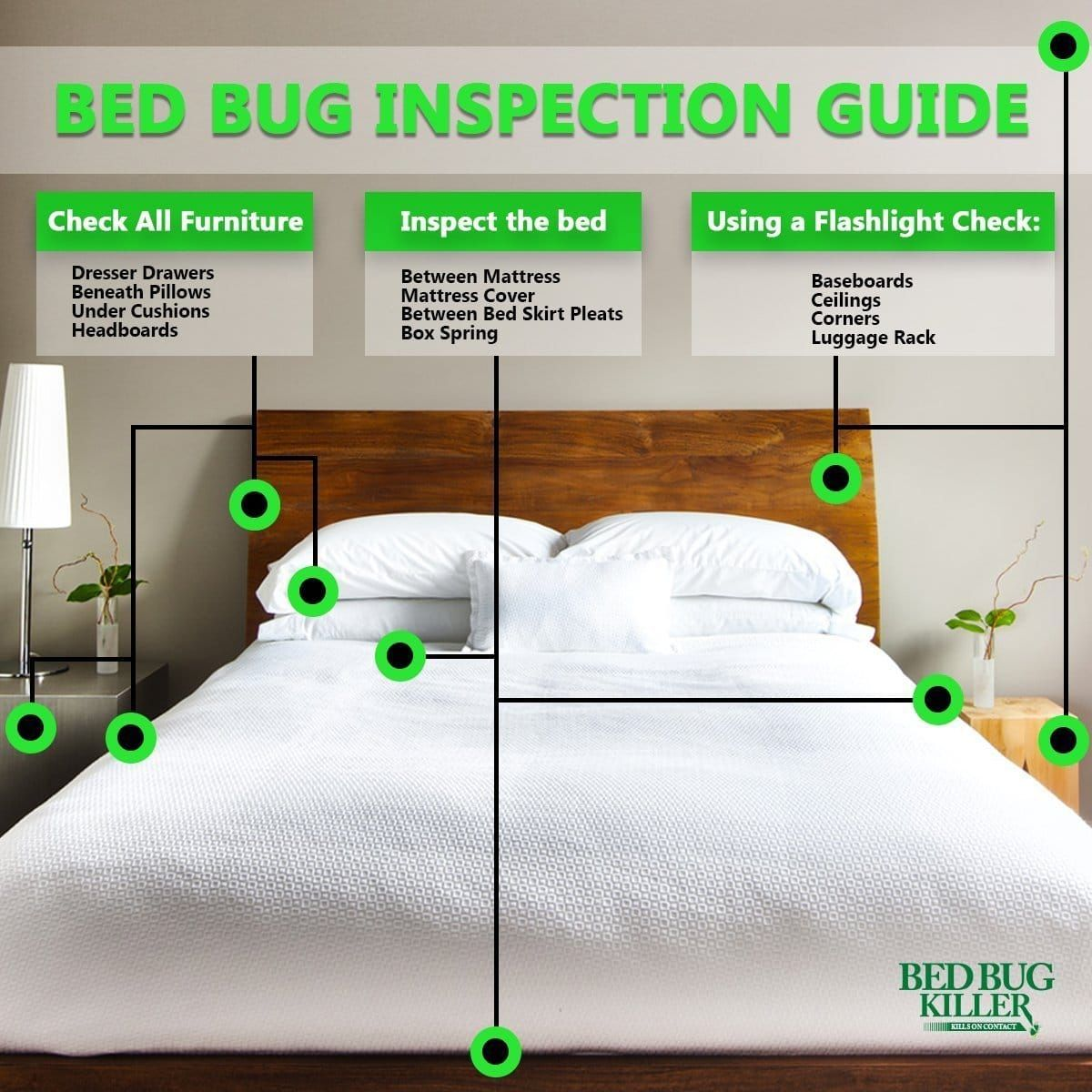 How to check for bed bugs in a hotel room or other public