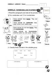 English teaching worksheets: Vertebrates | Science | Pinterest ...